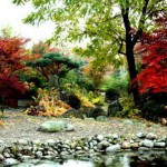 aranżacja ogrodu 10