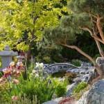 aranżacja ogrodu 7