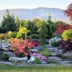 aranżacj ogrodu 6